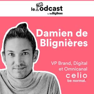 Damien de Blignières